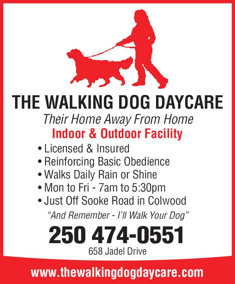 How To Write Dog Walking Ad
