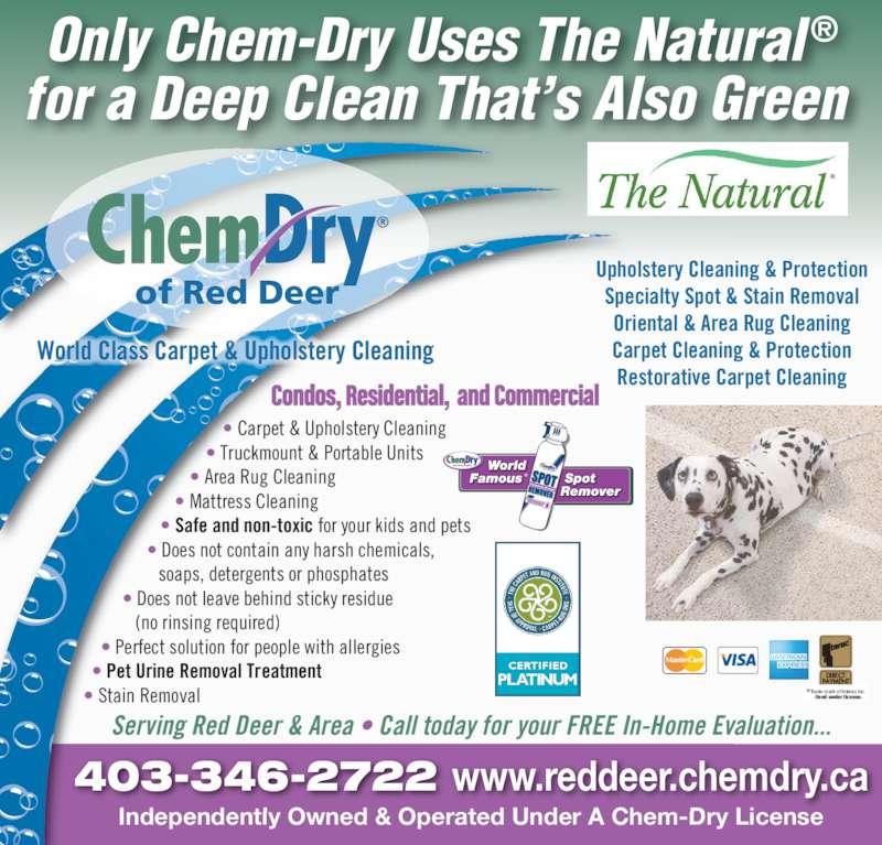 Dog Urine Oriental Rug: 55 Jepsen Cres, Red Deer, AB