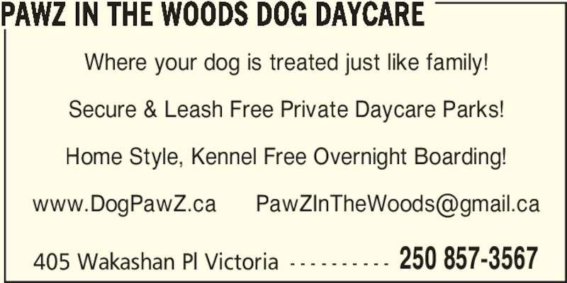 Indoor Dog Parks Etobicoke