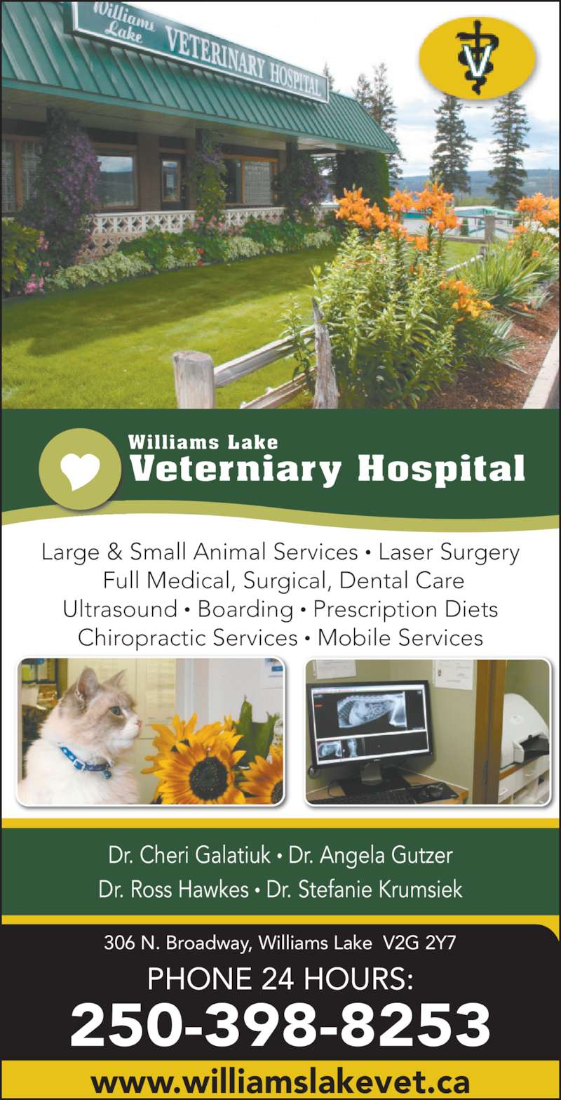 Animal Care Hospital Quesnel Bc