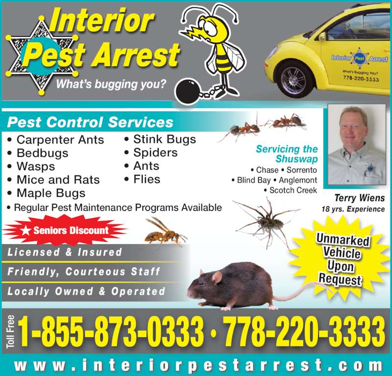 interior pest arrest opening hours 950 lorne st kamloops bc. Black Bedroom Furniture Sets. Home Design Ideas
