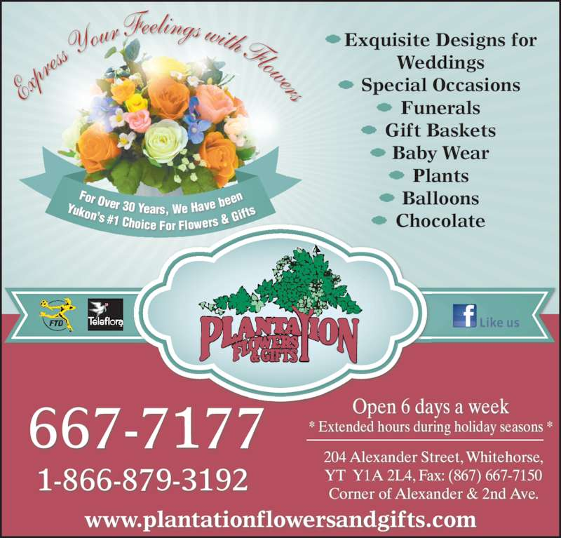 Plantation Flowers & Gifts (867-667-7177) - Display Ad - ress  Your  Feelings with Flowers Exquisite Designs for Weddings Special Occasions Funerals Gift Baskets Baby Wear Plants Balloons Chocolate 204 Alexander Street, Whitehorse, YT  Y1A 2L4, Fax: (867) 667-7150 Corner of Alexander & 2nd Ave. www.plantationflowersandgifts.com 1-866-879-3192 Open 6 days a week  * Extended hours during holiday seasons * 667-7177 For Over 30 Years, We Have b eenYukon's #1 Choice For Flowers &  Gifts Exp