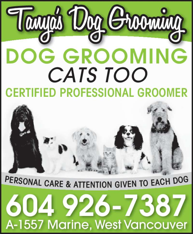 Dog Grooming Vancouver Bc