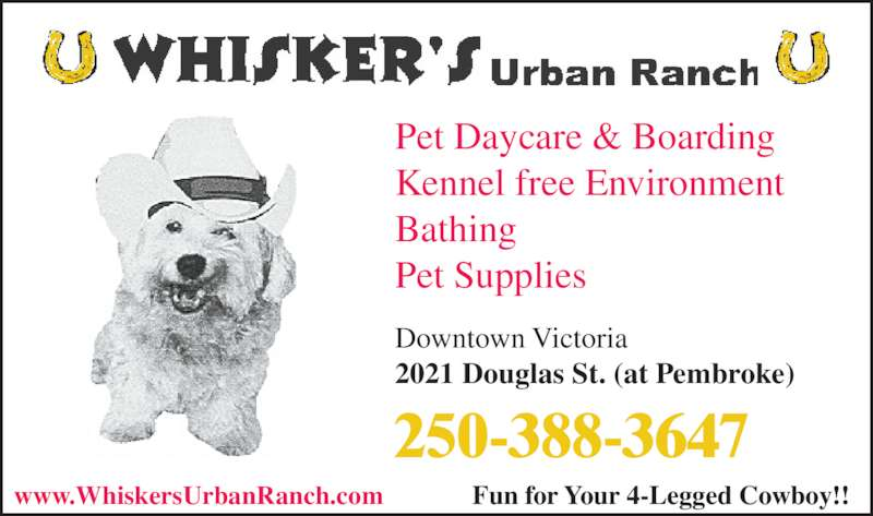 Whisker's Urban Ranch Pet Daycamp Co (250-388-3647) - Display Ad - Pet Daycare & Boarding Kennel free Environment Bathing Pet Supplies Downtown Victoria 2021 Douglas St. (at Pembroke) 250-388-3647 www.WhiskersUrbanRanch.com Fun for Your 4-Legged Cowboy!!