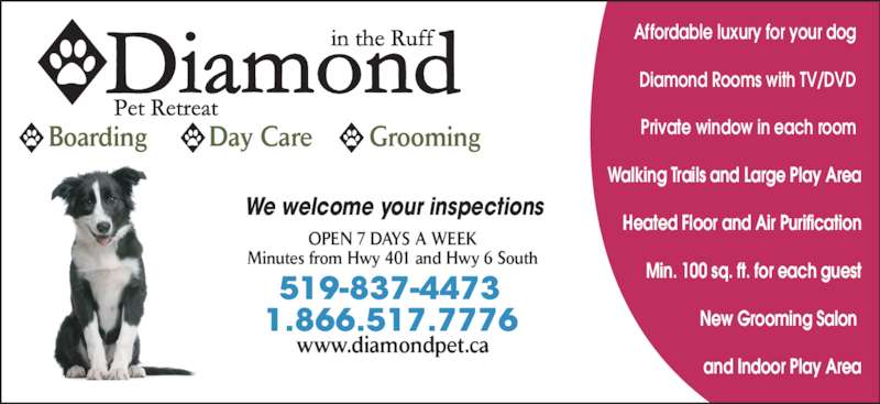 Diamond In The Ruff Pet Retreat (519-837-4473) - Display Ad - Boarding Day Care Grooming 519-837-4473 1.866.517.7776 We welcome your inspections OPEN 7 DAYS A WEEK Minutes from Hwy 401 and Hwy 6 South www.diamondpet.ca Affordable luxury for your dog Diamond Rooms with TV/DVD Private window in each room Walking Trails and Large Play Area Heated Floor and Air Purification Min. 100 sq. ft. for each guest New Grooming Salon  and Indoor Play Area