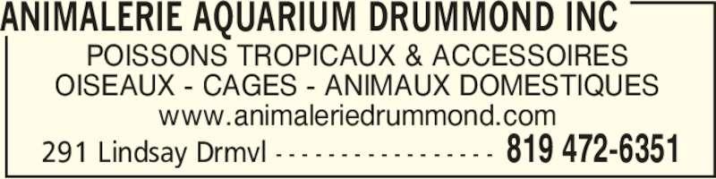 Aquarium Drummond (819-472-6351) - Annonce illustrée======= - POISSONS TROPICAUX & ACCESSOIRES OISEAUX - CAGES - ANIMAUX DOMESTIQUES www.animaleriedrummond.com ANIMALERIE AQUARIUM DRUMMOND INC 819 472-6351291 Lindsay Drmvl - - - - - - - - - - - - - - - - -