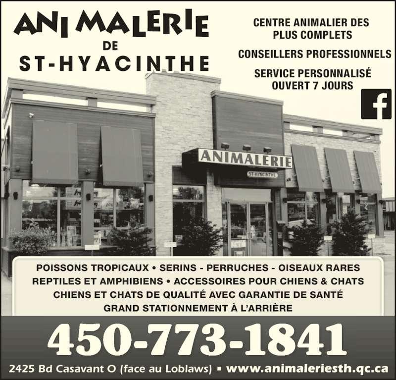Animalerie St-Hyacinthe (450-773-1841) - Annonce illustrée======= - CENTRE ANIMALIER DES  PLUS COMPLETS OUVERT 7 JOURS CONSEILLERS PROFESSIONNELS SERVICE PERSONNALISÉ 2425 Bd Casavant O (face au Loblaws) • www.animaleriesth.qc.ca 450-773-1841 POISSONS TROPICAUX • SERINS - PERRUCHES - OISEAUX RARES REPTILES ET AMPHIBIENS • ACCESSOIRES POUR CHIENS & CHATS CHIENS ET CHATS DE QUALITÉ AVEC GARANTIE DE SANTÉ GRAND STATIONNEMENT À L'ARRIÈRE