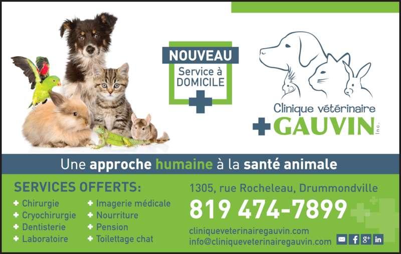 Clinique Vétérinaire Gauvin (819-474-7899) - Annonce illustrée======= -