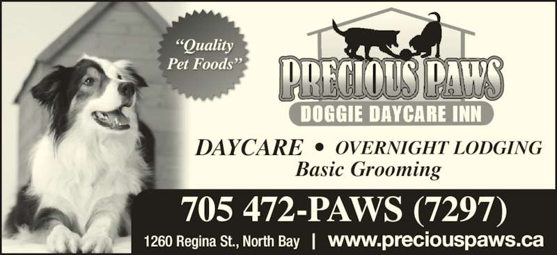 "Precious Paws Doggie Daycare Inn (705-472-7297) - Display Ad - www.preciouspaws.ca 705 472-PAWS (7297) Basic Grooming OVERNIGHT LODGINGDAYCARE  •  1260 Regina St., North Bay ""Quality Pet Foods"""