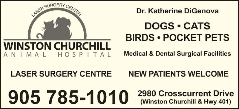 Winston Churchill Animal Hospital (905-785-1010) - Display Ad -