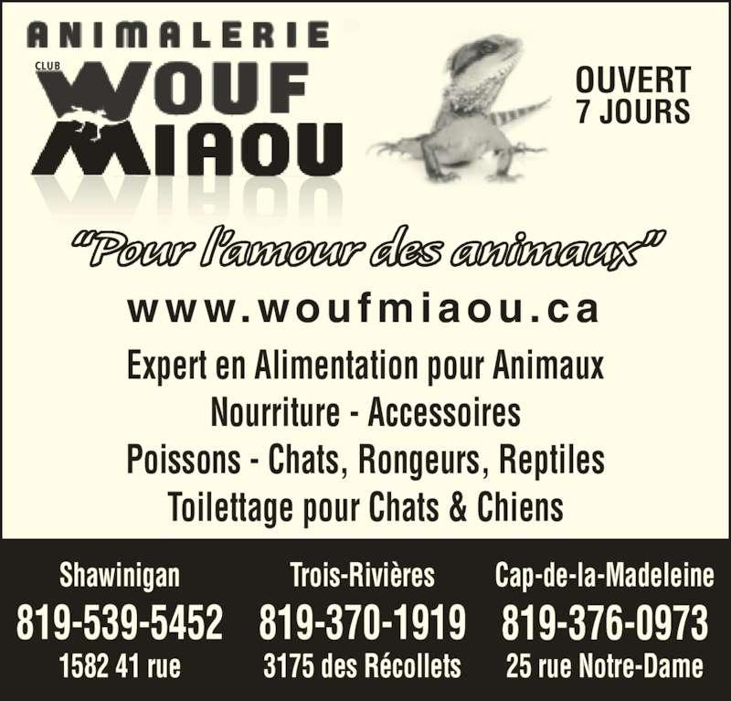 """Animalerie Club Wouf Miaou Shawinigan (819-539-5452) - Annonce illustrée======= - www.woufmiaou .ca """"Pour l'amour des animaux"""" Trois-Rivières 819-370-1919 3175 des Récollets Shawinigan 819-539-5452 1582 41 rue Cap-de-la-Madeleine 819-376-0973 25 rue Notre-Dame Expert en Alimentation pour Animaux Nourriture - Accessoires Poissons - Chats, Rongeurs, Reptiles Toilettage pour Chats & Chiens OUVERT 7 JOURS CLUB"""