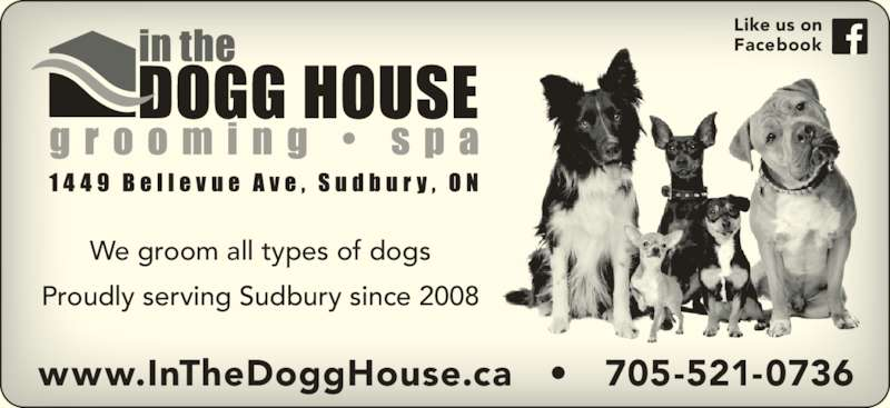In The Dogg House Grooming Spa (705-521-0736) - Display Ad - We groom all types of dogs Proudly serving Sudbury since 2008 www.InTheDoggHouse.ca   •   705-521-0736 Like us on Facebook