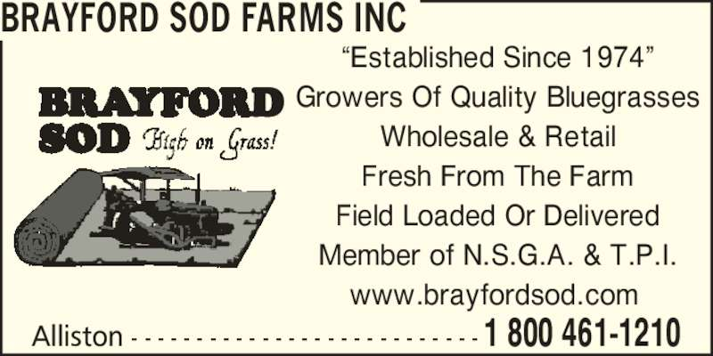 "Brayford Sod Farms Inc (705-435-7707) - Display Ad - Growers Of Quality Bluegrasses Wholesale & Retail Fresh From The Farm Field Loaded Or Delivered Member of N.S.G.A. & T.P.I. www.brayfordsod.com  Alliston - - - - - - - - - - - - - - - - - - - - - - - - - - - 1 800 461-1210 BRAYFORD SOD FARMS INC ""Established Since 1974"""