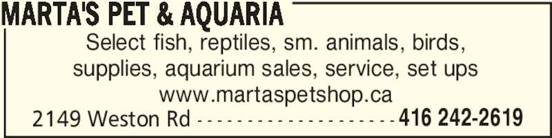 Marta's Pet & Aquaria (416-242-2619) - Display Ad - MARTA'S PET & AQUARIA 2149 Weston Rd - - - - - - - - - - - - - - - - - - - - 416 242-2619 Select fish, reptiles, sm. animals, birds, supplies, aquarium sales, service, set ups www.martaspetshop.ca