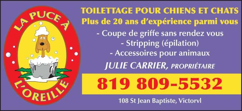 Toilettage la puce a l 39 orelle victoriaville qc 108 for Salon de toilettage montreal