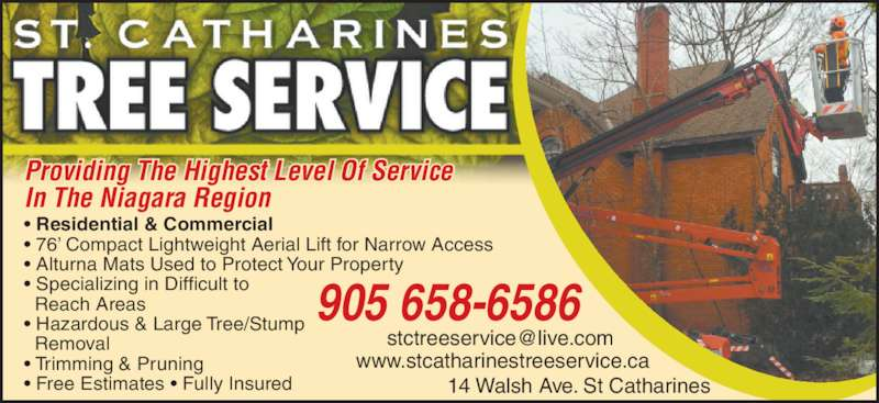 st catharines tree service - opening hours