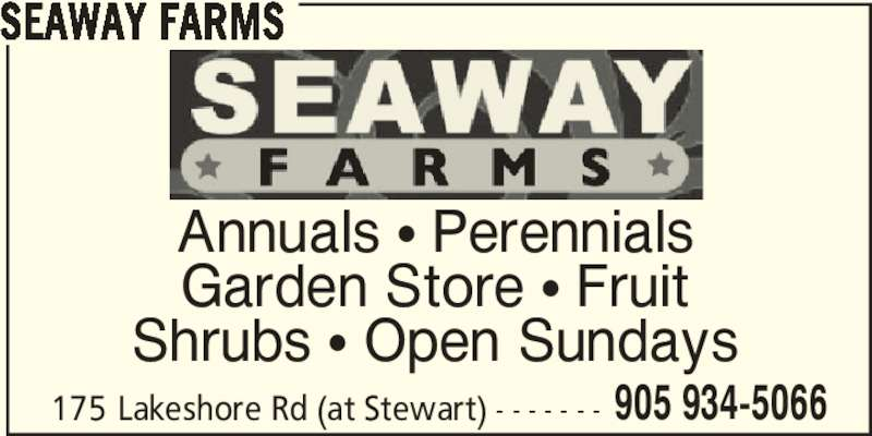 Seaway Farms (905-934-5066) - Display Ad - Annuals π Perennials Garden Store π Fruit Shrubs π Open Sundays 175 Lakeshore Rd (at Stewart) - - - - - - - 905 934-5066 SEAWAY FARMS