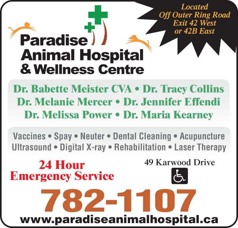 Paradise Animal Hospital (709-782-1107) - Display Ad - Dr. Babette Meister CVA • Dr. Tracy Collins Dr. Melanie Mercer • Dr. Jennifer Effendi Dr. Melissa Power • Dr. Maria Kearney 24 Hour Emergency Service www.paradiseanimalhospital.ca 782-1107 49 Karwood Drive Located Off Outer Ring Road Exit 42 West or 42B East Vaccines • Spay • Neuter • Dental Cleaning • Acupuncture Ultrasound • Digital X-ray • Rehabilitation • Laser Therapy