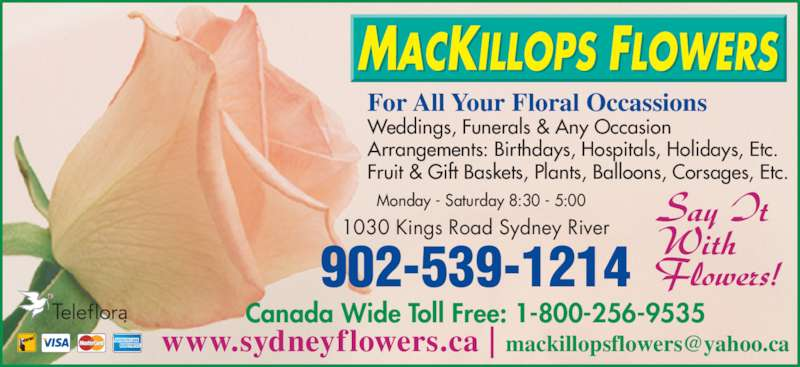 MacKillops Flowers (902-539-1214) - Display Ad - Monday - Saturday 8:30 - 5:00 1030 Kings Road Sydney River 902-539-1214 Canada Wide Toll Free: 1-800-256-9535 For All Your Floral Occassions Weddings, Funerals & Any Occasion Arrangements: Birthdays, Hospitals, Holidays, Etc. Fruit & Gift Baskets, Plants, Balloons, Corsages, Etc.