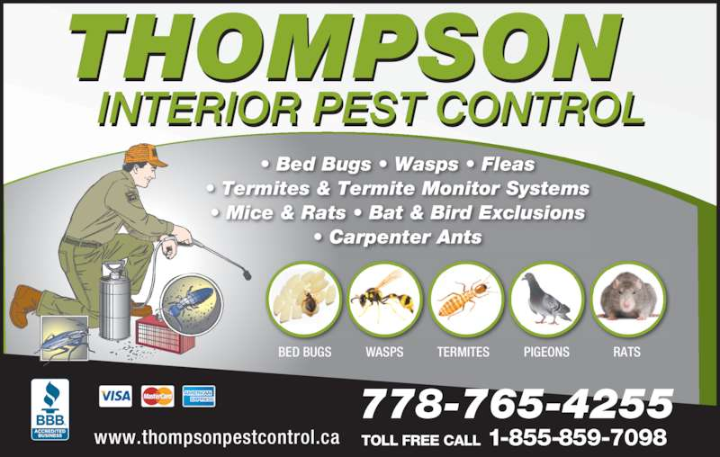 thompson interior pest control opening hours. Black Bedroom Furniture Sets. Home Design Ideas
