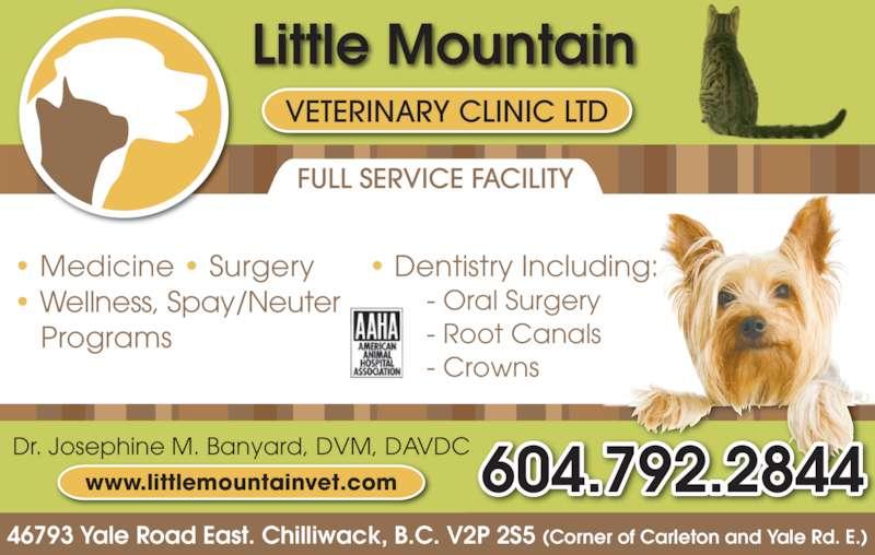 24 hour pet clinic near me pets world
