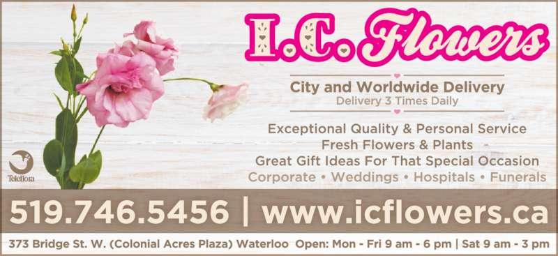 I C Flowers (519-746-5456) - Display Ad -