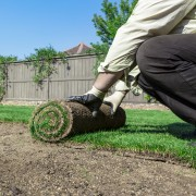 6 secrets to successfully laying down grass sod