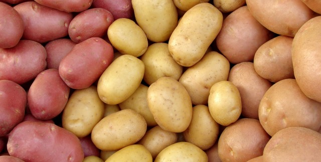 Guide to potato varieties