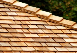 What to know before you repair or replace a wooden shingle
