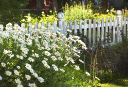 9 steps to building a picket or chain link fence