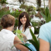 Protect and safeguard house and greenhouse plants