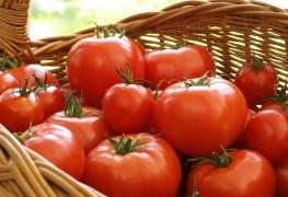 A quick recipe for tomato and citrus blush