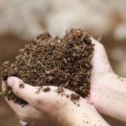 How feeling soil can help you grow a better garden