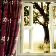 Greener choices: window coverings and furniture