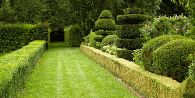 2 garden ideas: French formal and English landscape