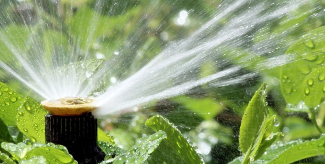 Choosing a watering system for your garden