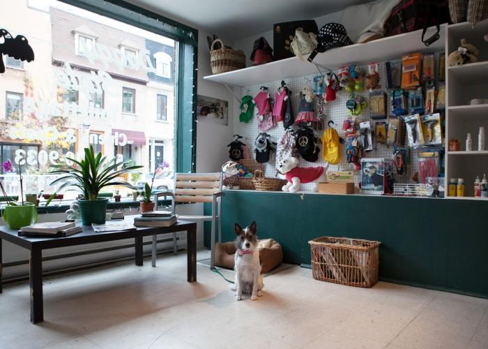 Centre de toilettage canin doggy style montr al business story - Salon design montreal ...