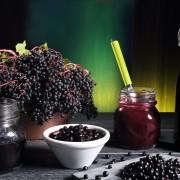 Elderberry: a magical medicinal plant