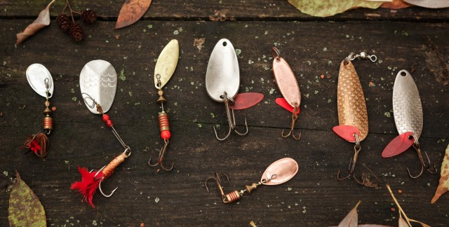 The best baits to use when freshwater fishing
