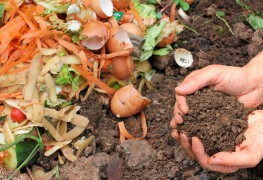 Tips to compost kitchen scraps