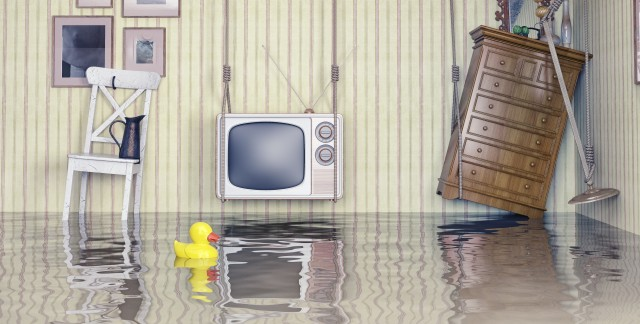 Easy fixes for water emergencies