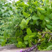 8 varieties of thyme for your garden