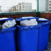 Tricks to keep your trash odourless and pest-free