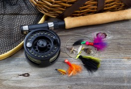 7 essential pieces of fishing equipment for beginners