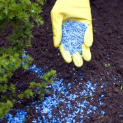 Money-saving advice for fertilizer and plant food