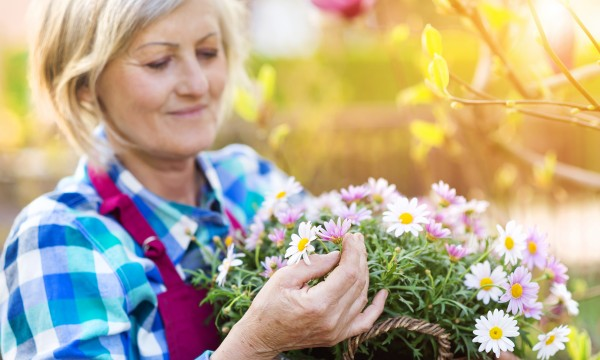 Garden more affordably with these 4 pointers