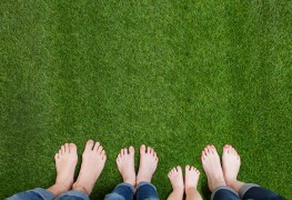 Guidelines for growing a carefree lawn