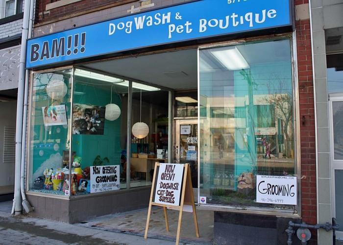 bam dogwash amp pet boutique toronto business story