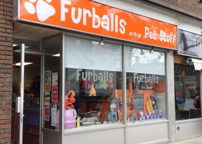 furballs pet stuff toronto business story