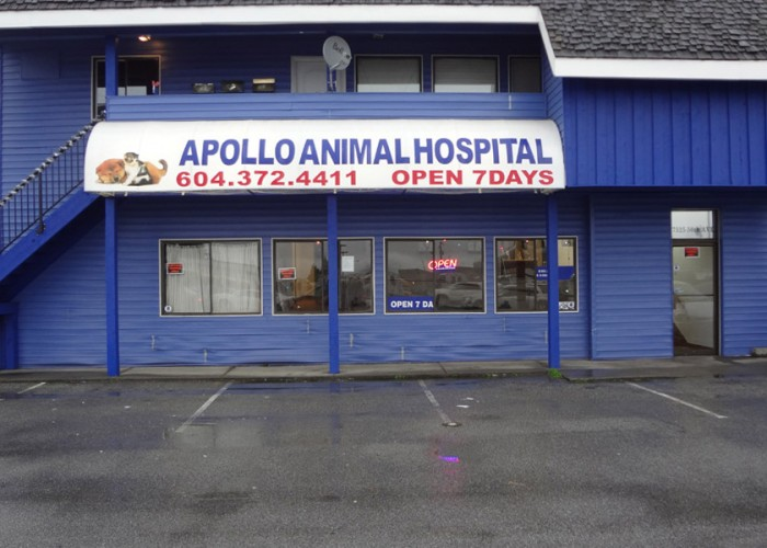 Apollo Animal Hospital. Checkups, surgeries, on-site diagnostics, pet supplies, in-house vaccinations, spaying, neutering, pain management, flea baths, performs ultrasounds, nutritional advice